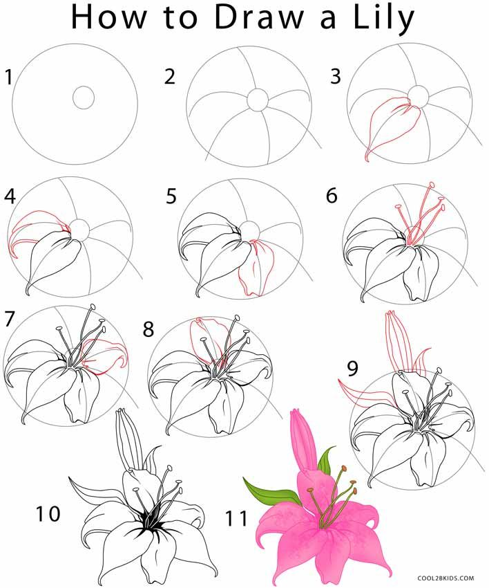 clip royalty free library How To Draw Flowers