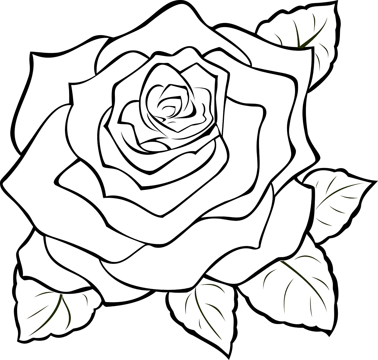 clip art freeuse library How to make of. Drawing photography rose