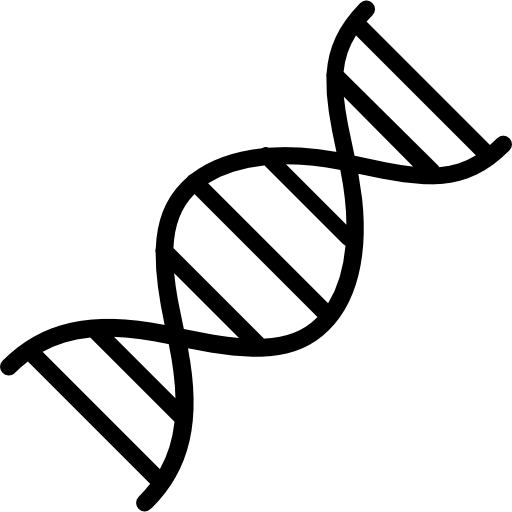 clipart freeuse stock Dna clipart. Structure transparent background free