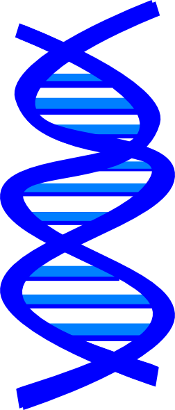 picture transparent library Dna clipart. Clip art at clker