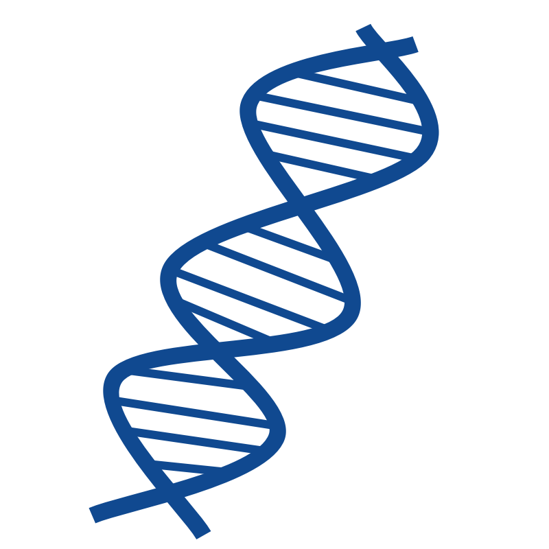 png free library Dna clipart. Free cliparts download clip