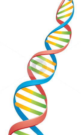 png free library Free cliparts download clip. Dna clipart