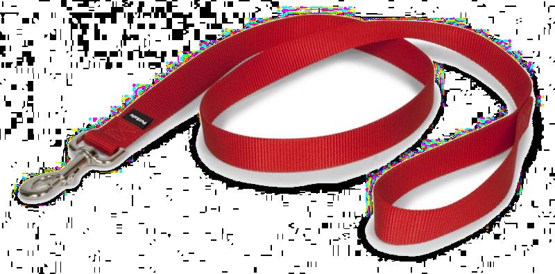 jpg Dog Leash and Collar Clip Art
