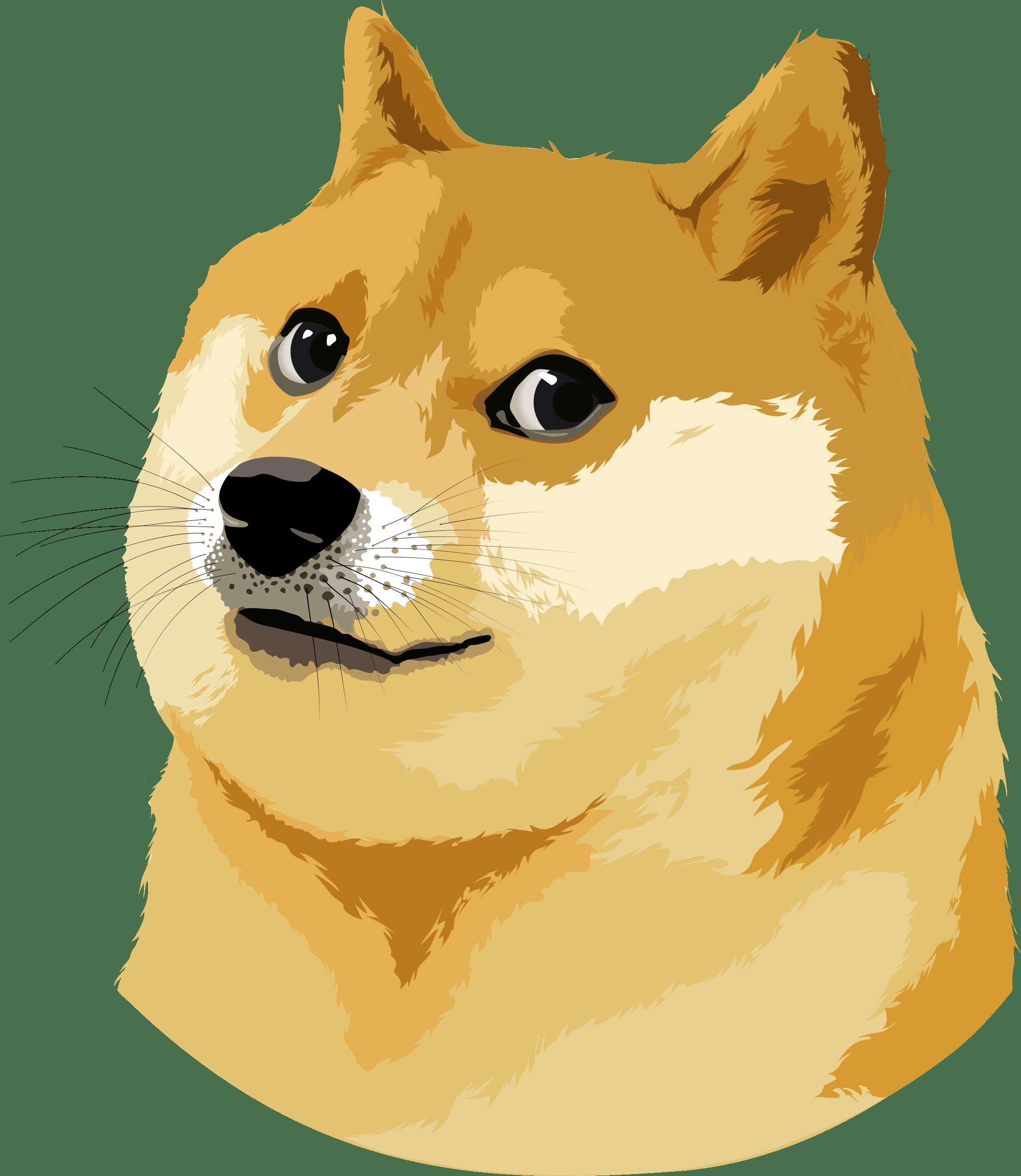 jpg free stock Doge vector. Illustration transparent png stickpng