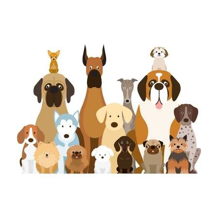 jpg Image result for group. Dogs clipart.