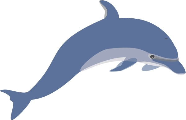png library stock Clip art free in. Vector dolphin traceable