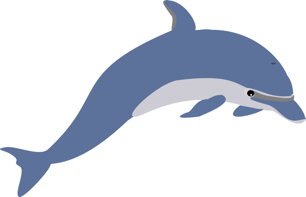 graphic library library Dolphin Download Cetacea Drawing Document free commercial clipart