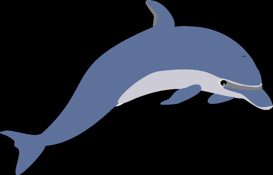 clip art download dolphin clipart dolphin clip art free clipart panda free clipart