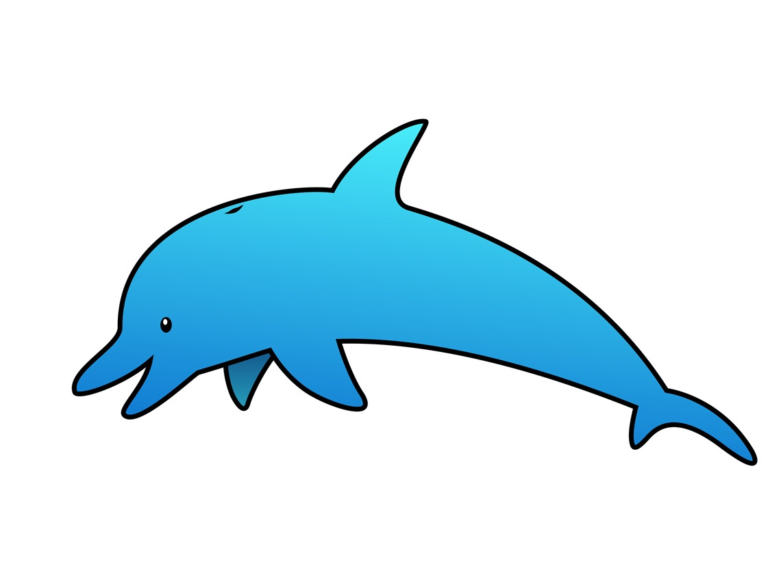 graphic free library Dolphin clipart. Pictures on animal picture.
