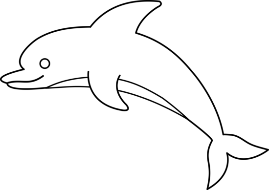png Dolphin clipart black and white. Animal line drawings cute