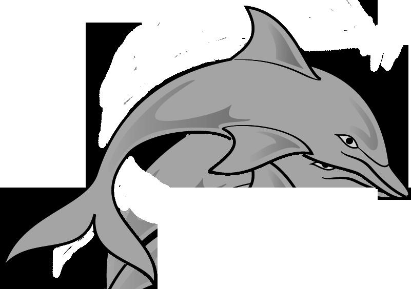 jpg library stock Dolphin Clipart