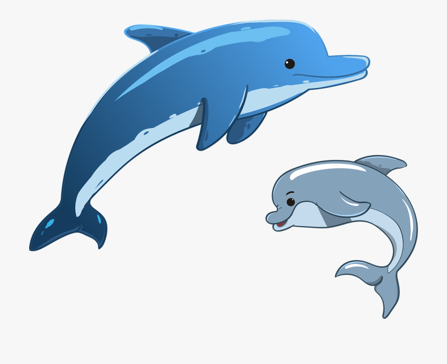 free stock Dolphins clipart. Cartoon dolphin jumping png