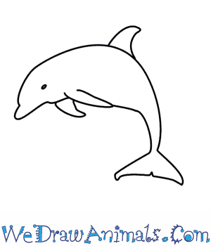 image transparent download How to draw a. Drawing dolphin