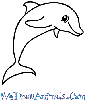 black and white How to Draw a Cartoon Dolphin