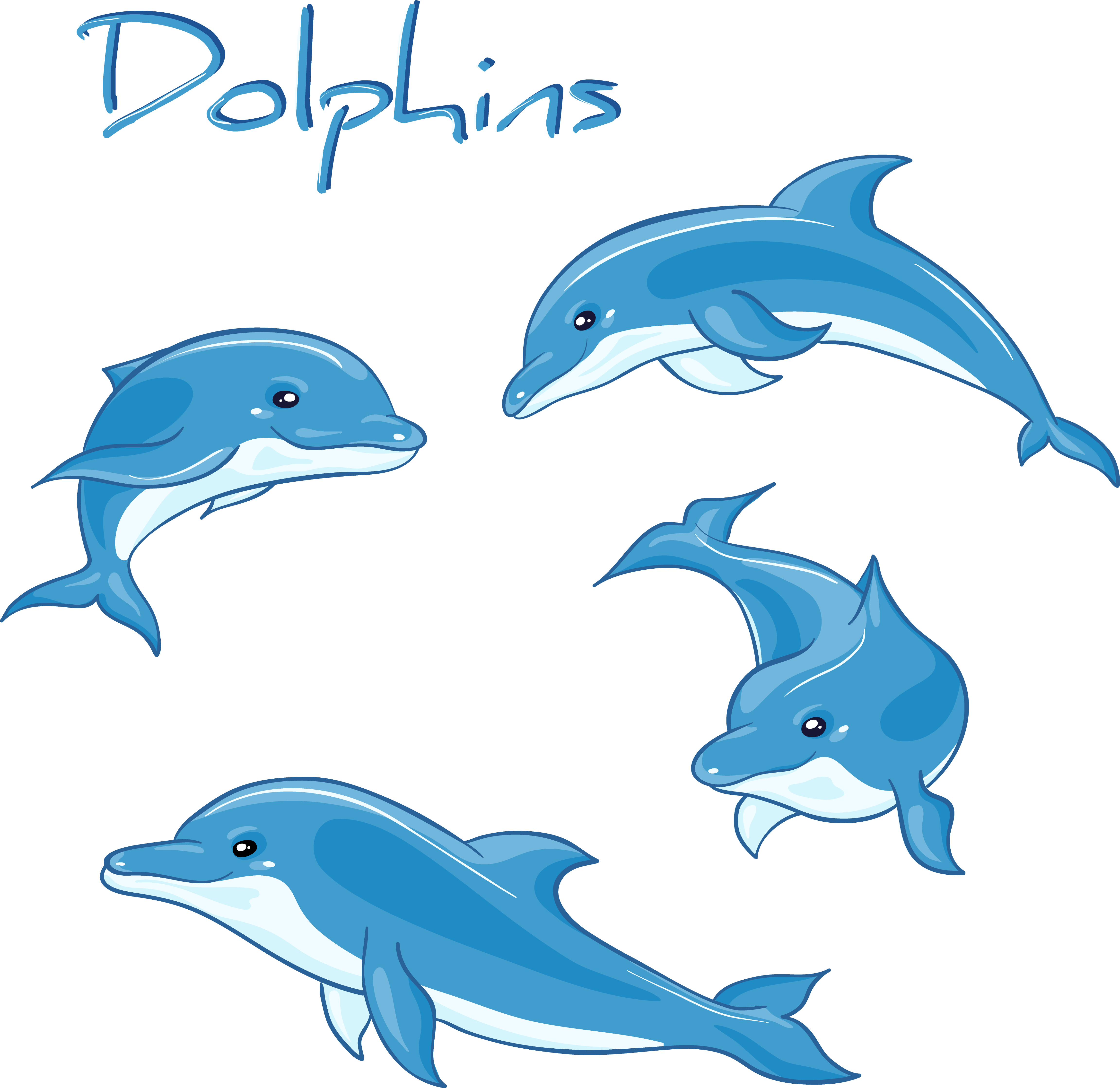 vector library library Dolphin Cartoon Drawing Royalty