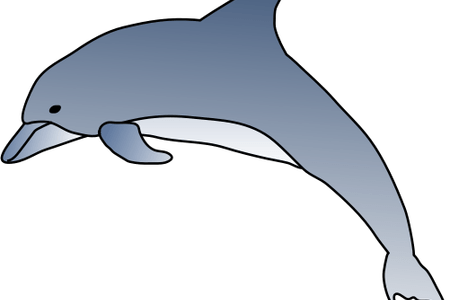 clip art royalty free library Vector dolphin simple. Pictures of dolphins cartoon