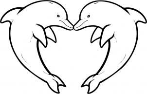 banner freeuse library how to draw love dolphins