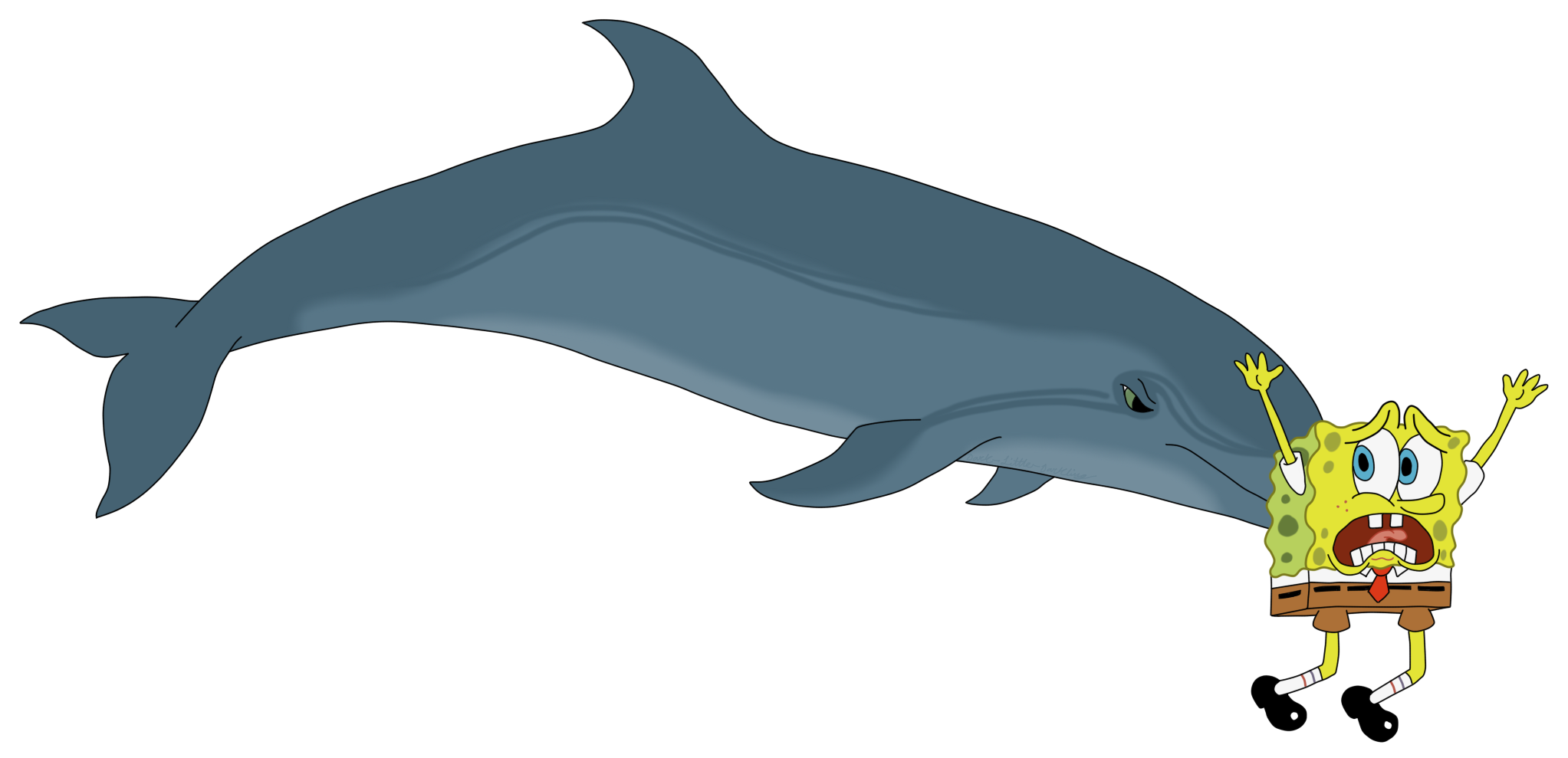 clip art library download A bottlenose dolphin sponging