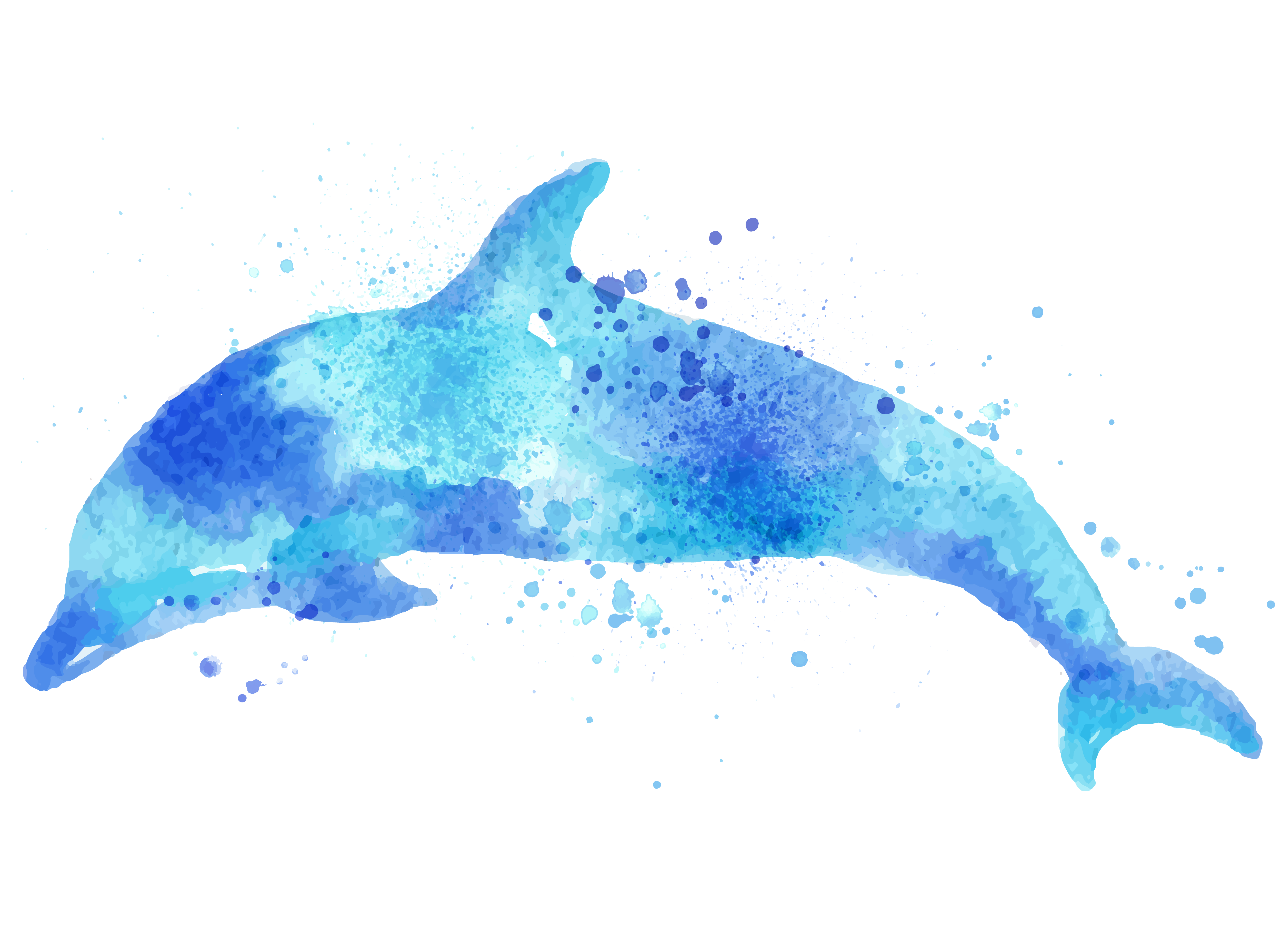 transparent stock Paper Dolphin Drawing Watercolor painting