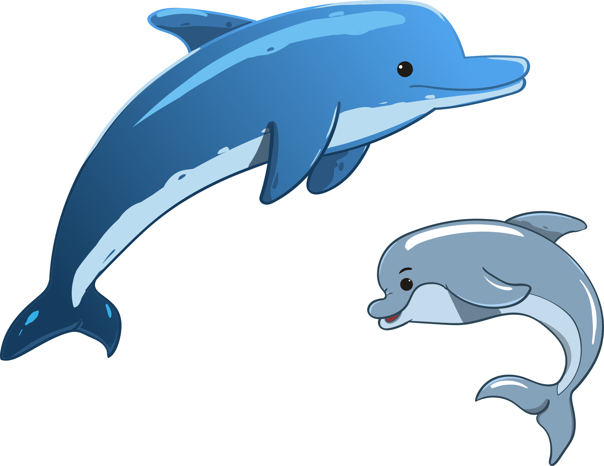 graphic library download Dolphins mother and her. Vector dolphin cute