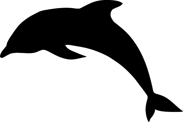 svg black and white Vector dolphin dolphine. Free image on pixabay
