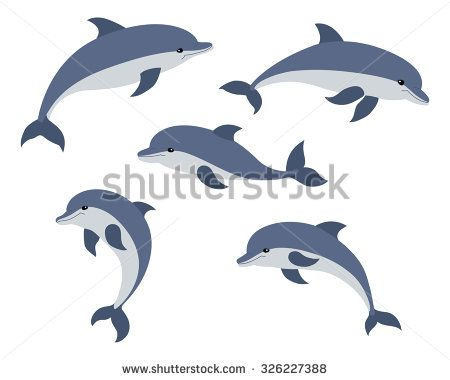 svg freeuse download Vector dolphin artwork. Set of five cute