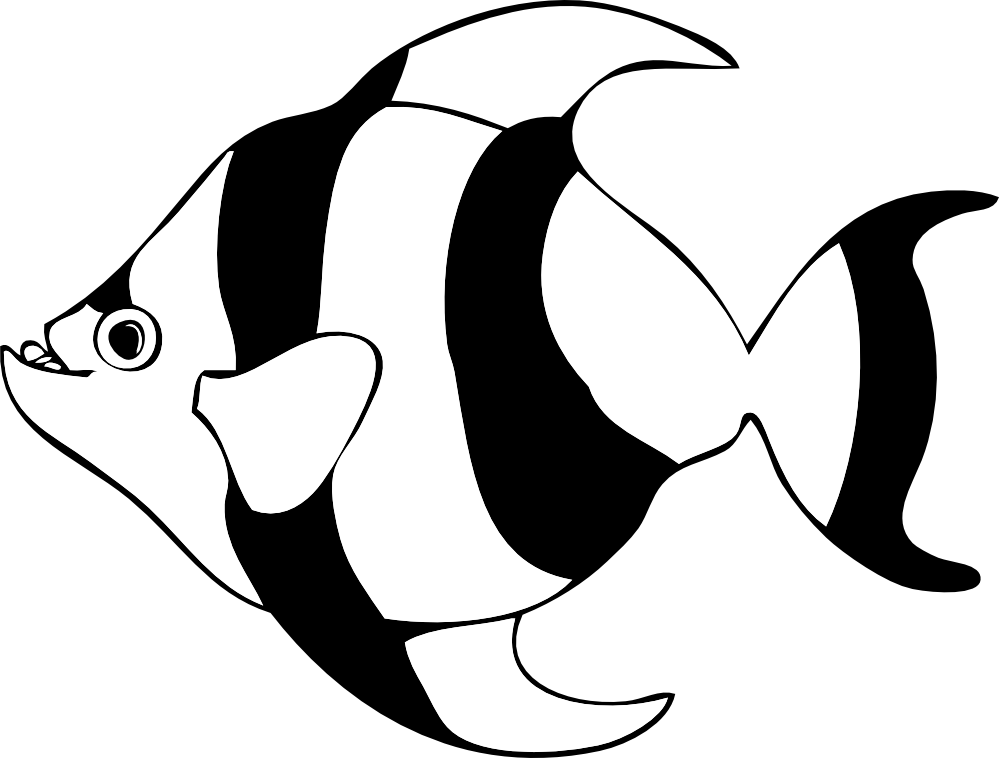 image free stock Collection of free Fishes clipart black and white