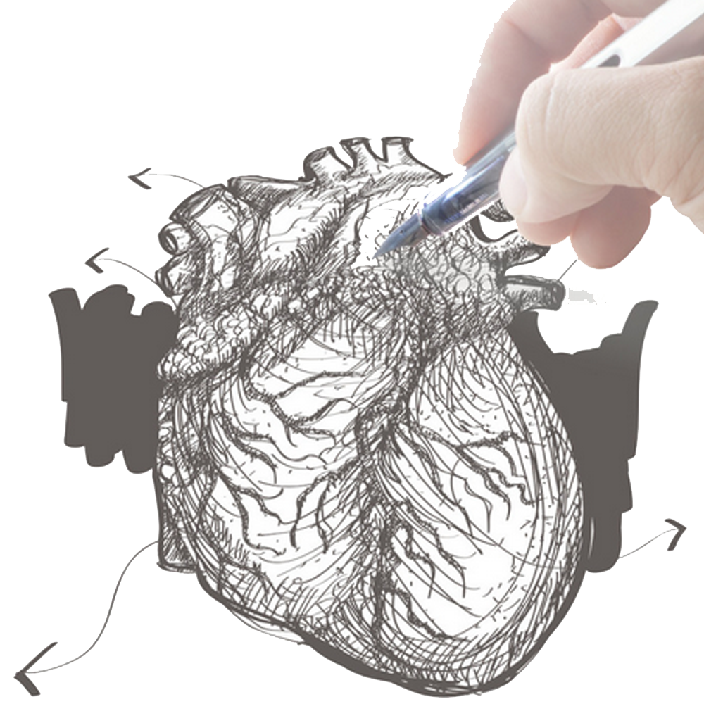 image royalty free library Heart Drawing Hand Illustration