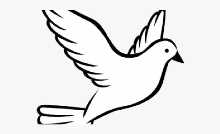svg stock Dove clipart. Download for free png