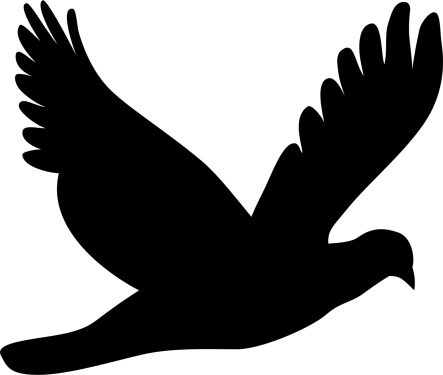jpg transparent stock Typography drawing bird. Columbidae silhouette mourning dove