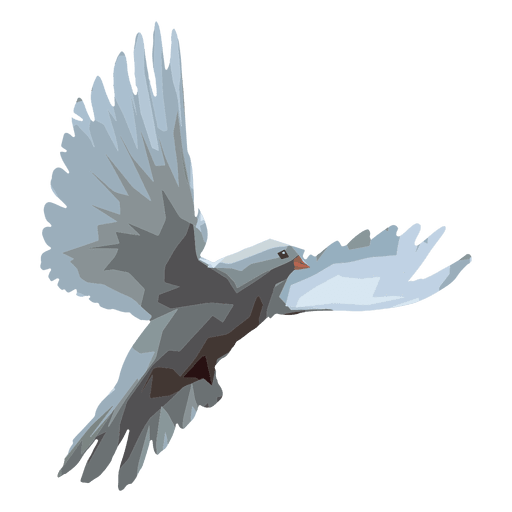 png free download Dove illustration