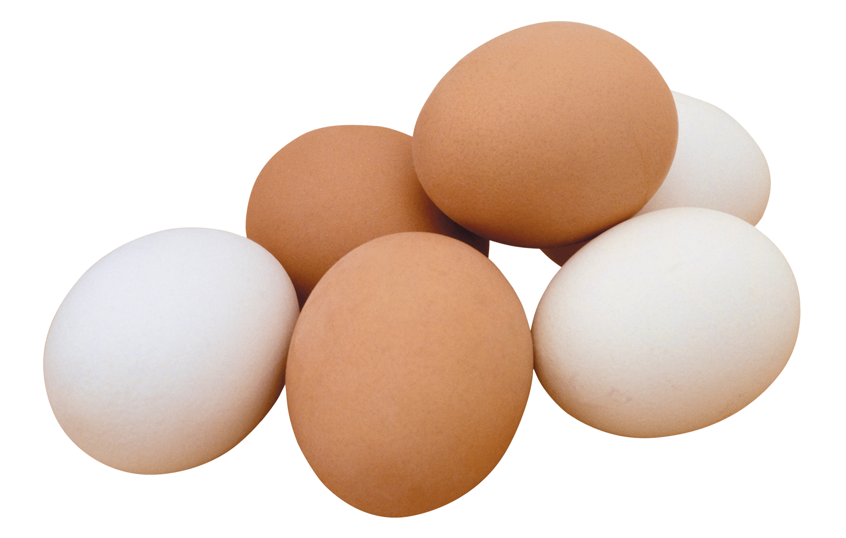 freeuse stock Basket png stickpng egg. Transparent eggs