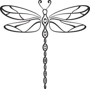 image transparent Dragonflies drawing. Dragonfly try tio create