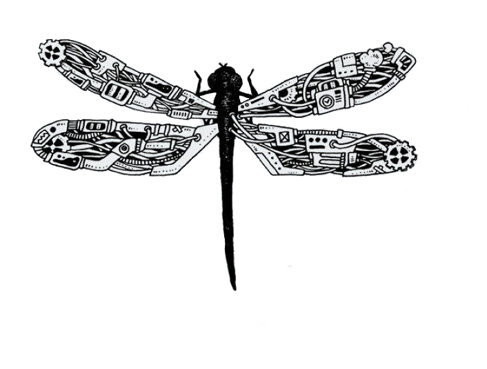 graphic free library Steampunk artist illustration creative. Dragonflies drawing
