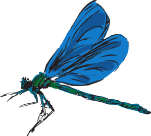 jpg free Dragonfly clipart. Art clip at clker