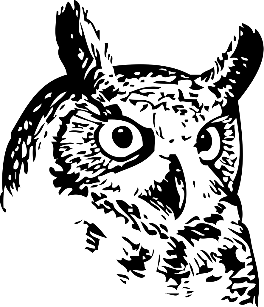 picture library download Drawing owls creepy. Collection of free vector