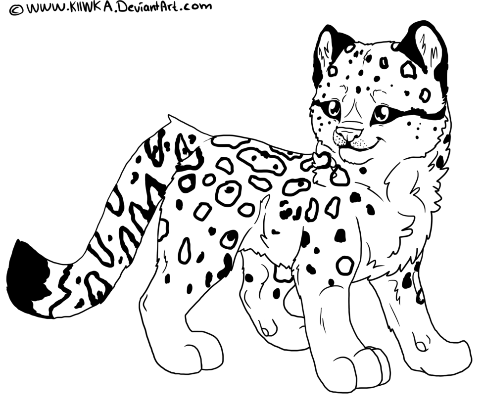 jpg transparent library Pages animal jam coloring. Drawing snow leopard