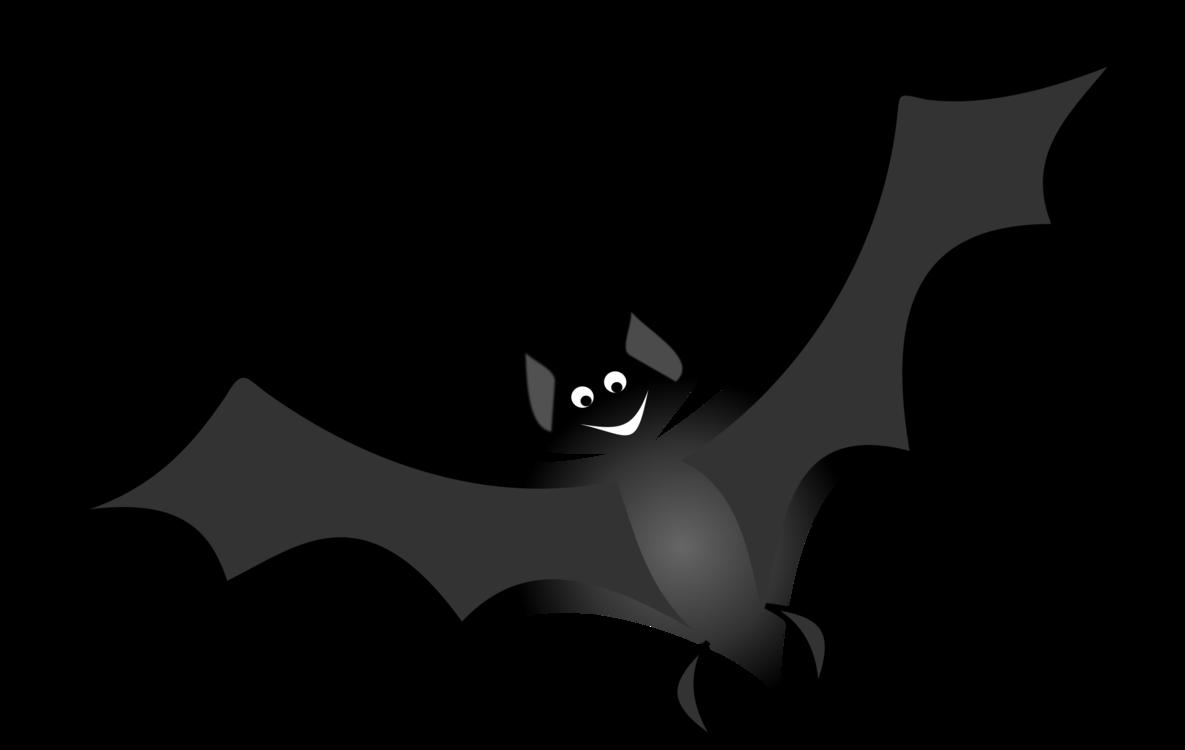 clip stock Vampire bat Sortie nocturne