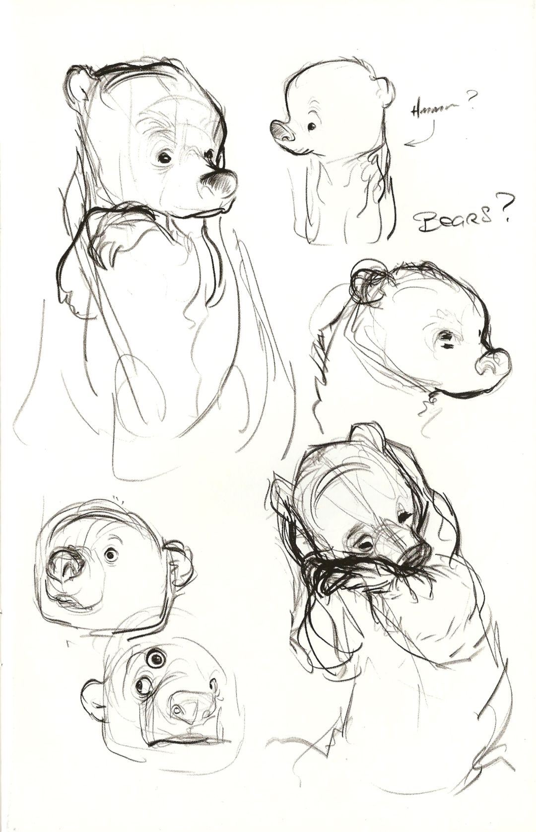 png black and white Drawing bears reference. Bear sheet and sketching