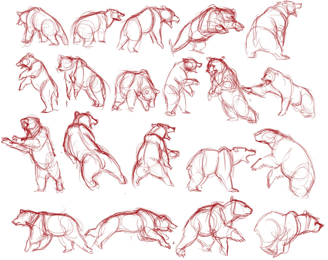 picture transparent stock Drawing bears reference. Art references lulustudies and