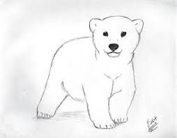 graphic free download Image result for little polar bear sketch