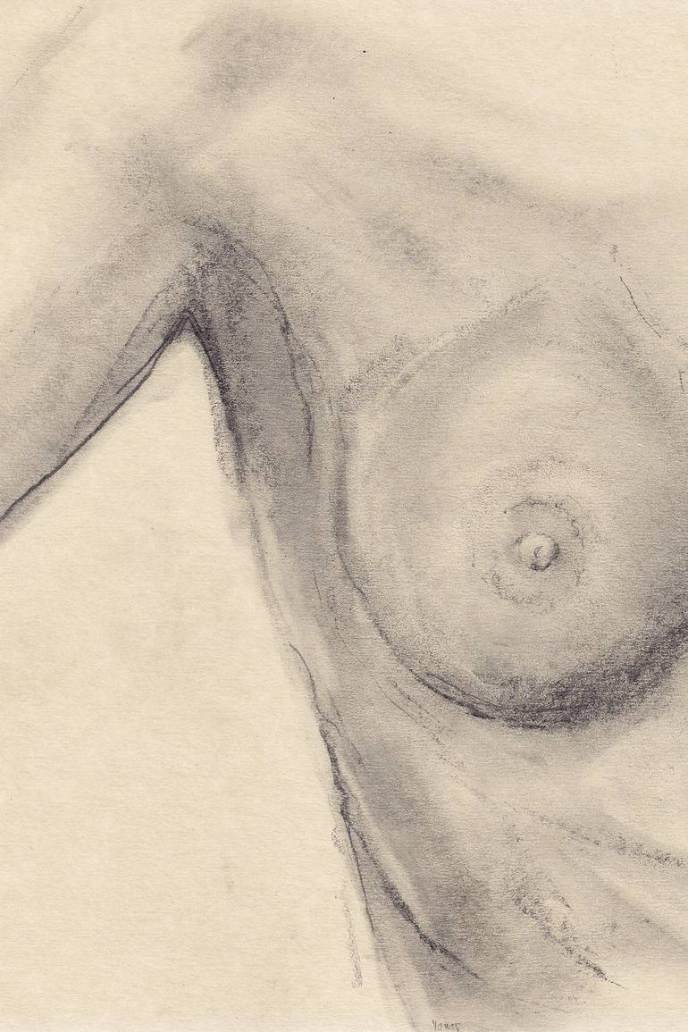 vector royalty free library Drawing breast pencil. After edward weston on.