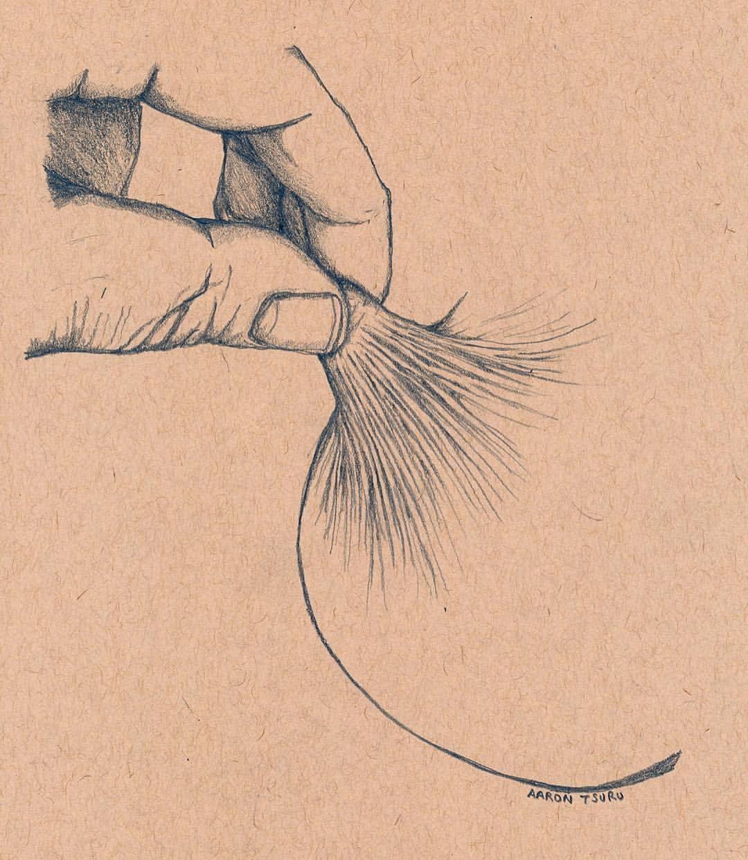 image transparent stock Pin on na ke. Drawing breast pencil.