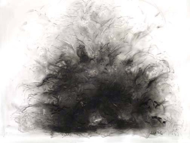 vector freeuse Lalit pant nature . Drawing charcoal abstract