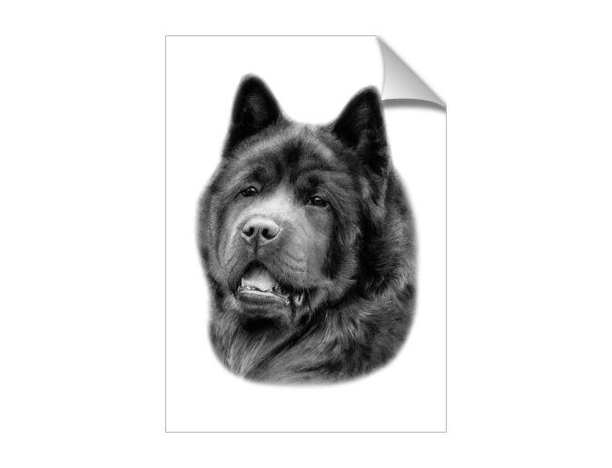 graphic transparent download Mysoti danguole dog artwork. Drawing charcoal animal