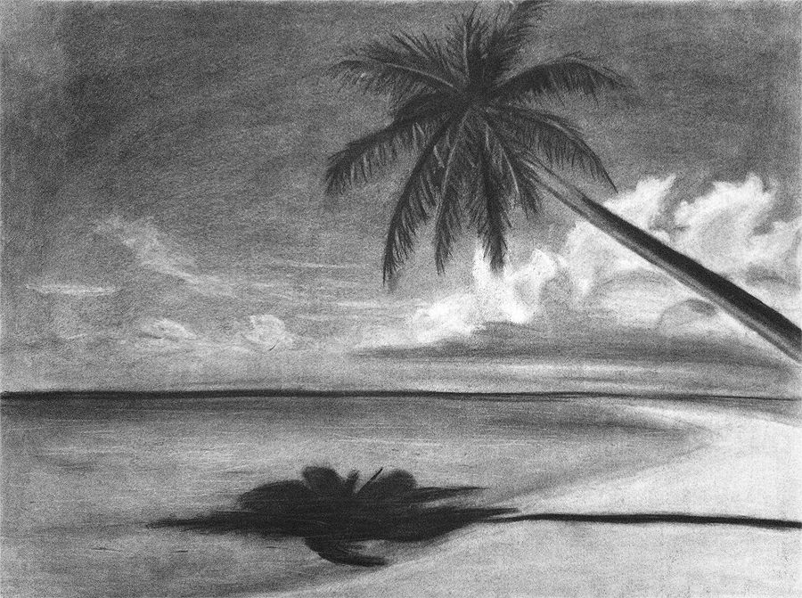 image black and white Scene that is stunning. Drawing charcoal beach