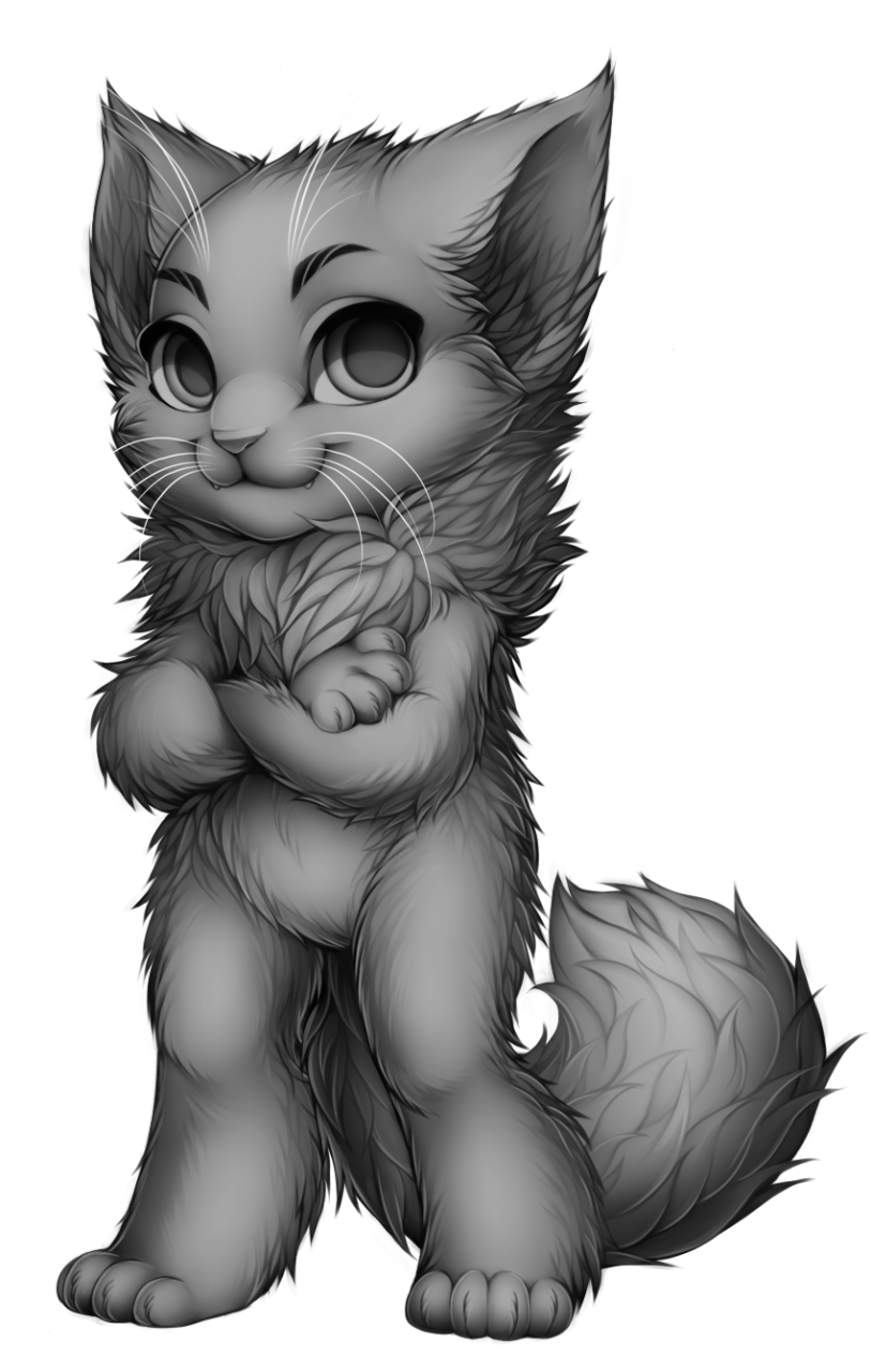 picture stock Drawing charcoal cat. Collection of free fur