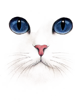 picture transparent download White research artist animal. Drawing charcoal cat