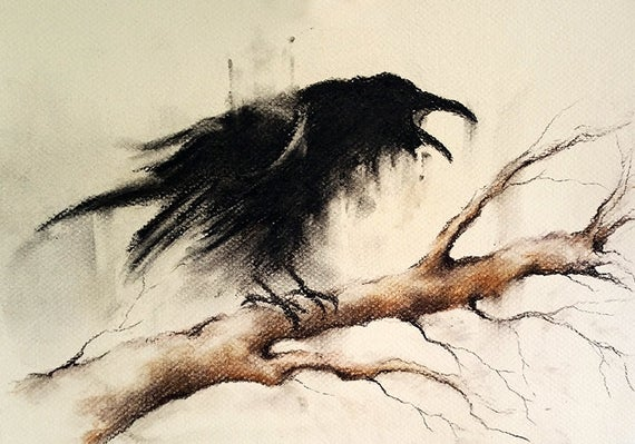 image library library Original black and white. Drawing charcoal crow