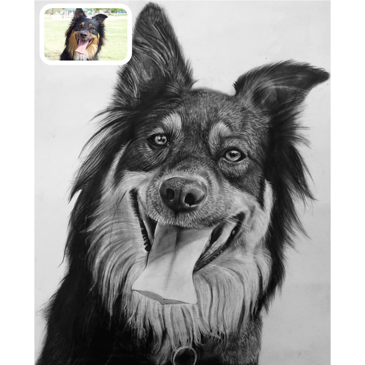 clipart library Drawing charcoal dog. Pet portraits photo to